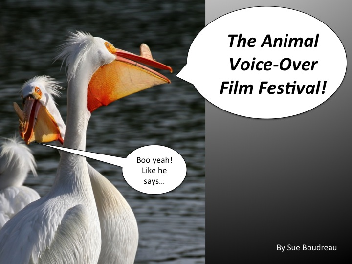 Animal Voice Over Film Festival