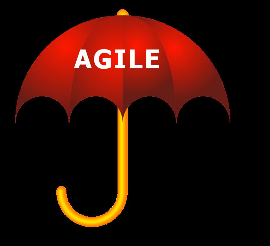 lean agile methodology