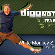 White Monkey Sinensis from Adagio Teas Custom Blends