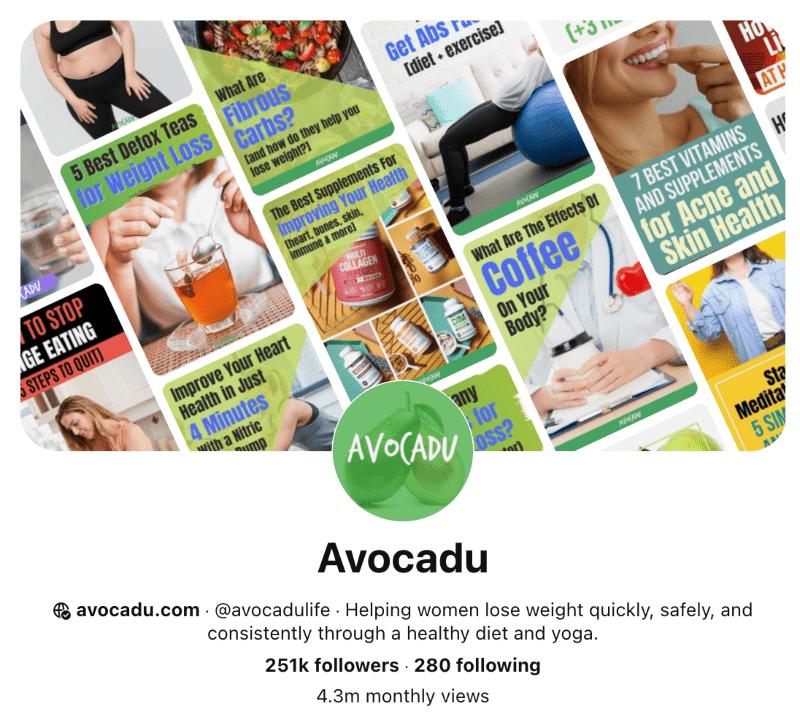 Avocadu Pinterest account screenshot