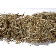 Organic Pai Mu Tan from Tea Desire