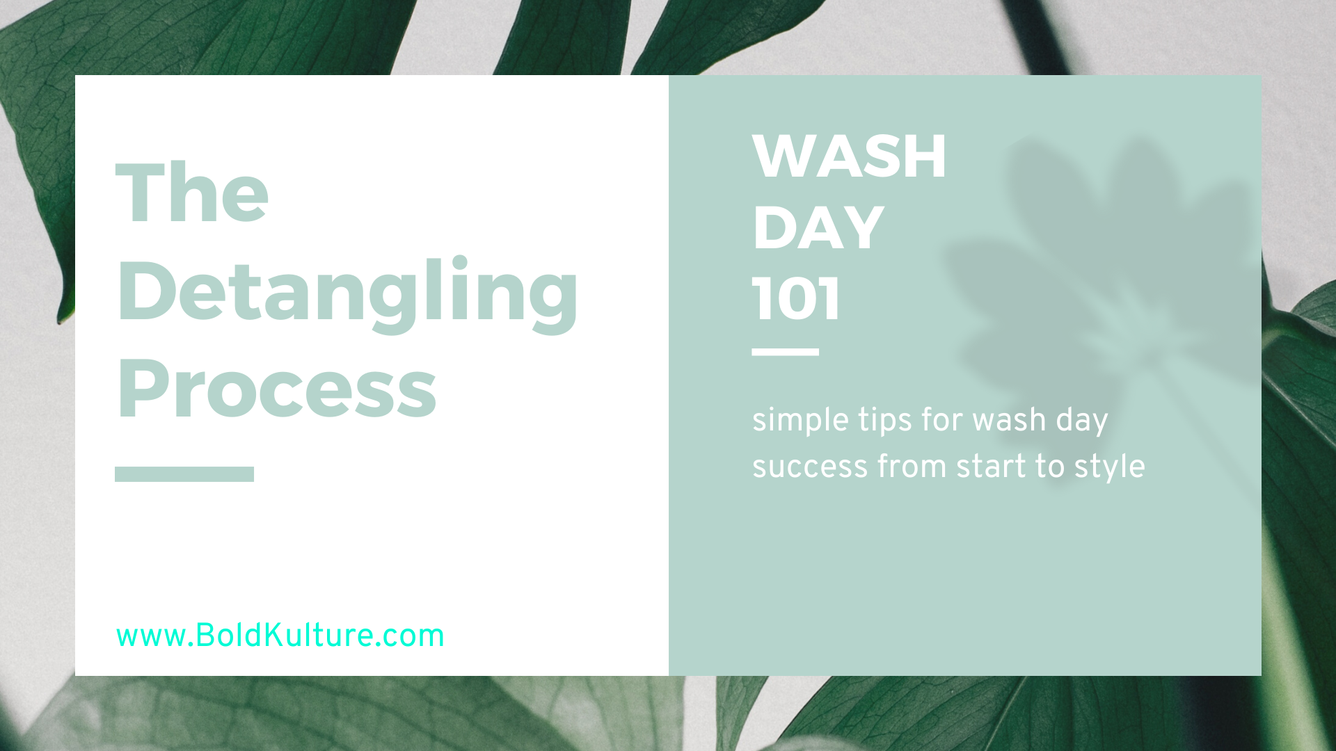 Wash Day 101 The Detangling Process