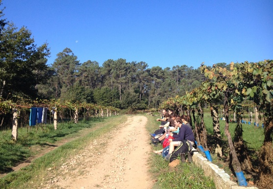 Hike, Reflect & Relax on the Camino Santiago