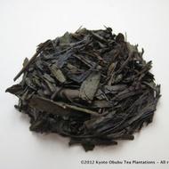Obubu Tea #11: Houjicha (Basic Roast) from Yunomi