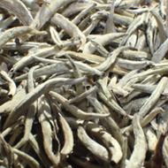 Silver needle white tea from sTEAp Shoppe