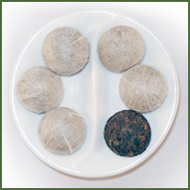 Organic Pu-erh Tuo Cha from Zen Tara Tea
