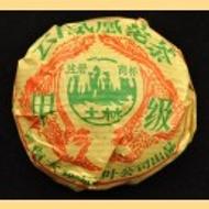 2004 Nan Jian Jia Ji Tuo Raw from Nan Jian Tea Factory (Yunnan Sourcing)