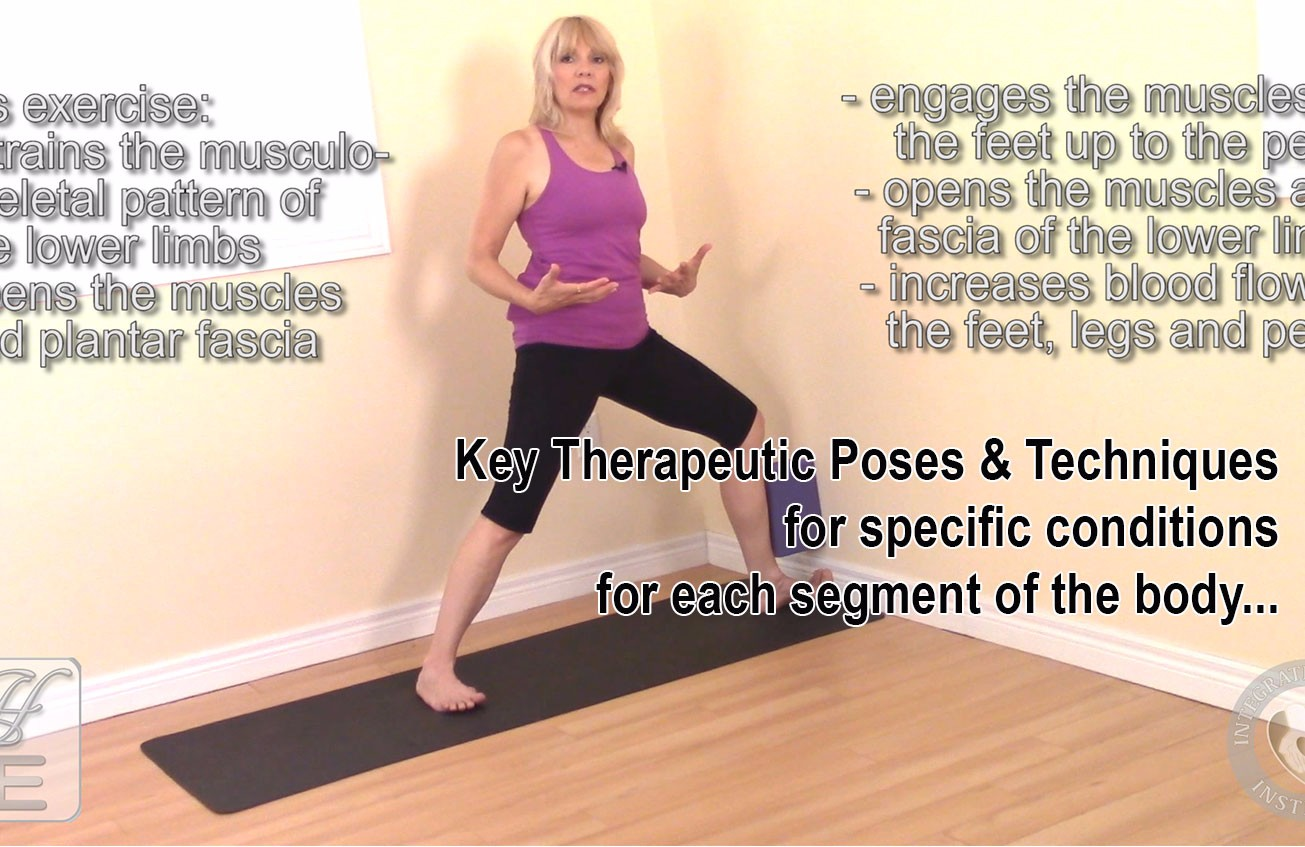 The Structural Alignment Yoga Therapy Online Course Contains A Downloadable