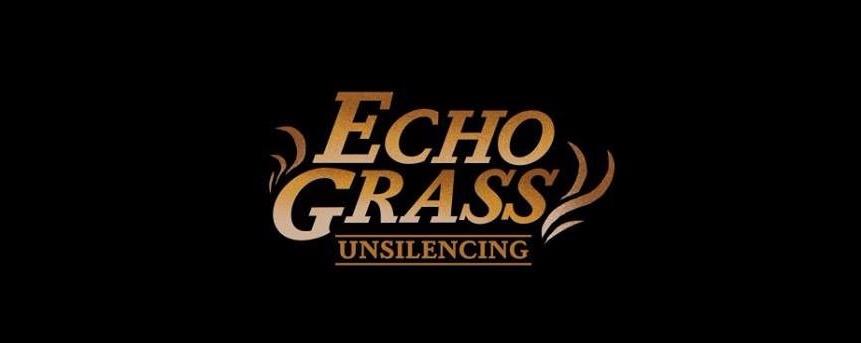 Echo Grass : Unsilencing (similarobjects' birthday)