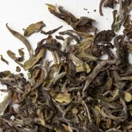 Darjeeling Castleton Ex-2 1st Flush from Camellia Sinensis