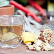 Organic Chrysantheberry from The Rabbit Hole Organic Tea Bar