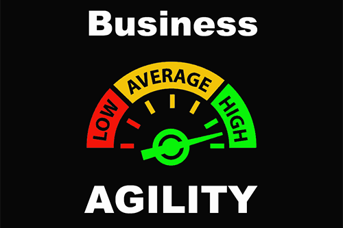 Business Agility Top 100 Consultants