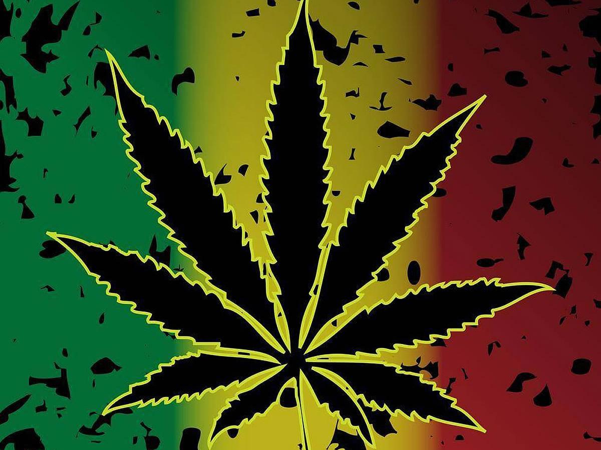 Вк марихуана темы марихуаны айс сорт