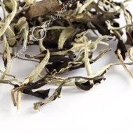moonlight teaPremium Yunnan Organic Moonlight White Buds puer Pu'er Puerh Loose Leaf Tea Raw from GoShopStreet (ebay)