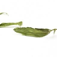 Dried Stevia Leaves Herbal Tea from Teavivre