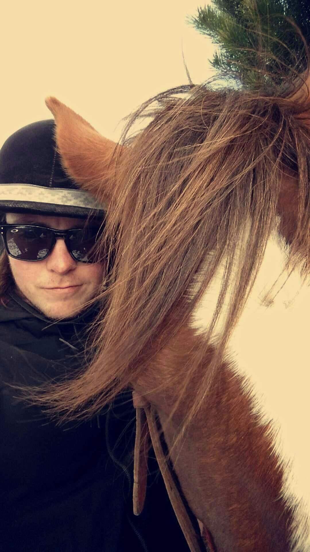 Horse selfie?