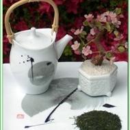 Kagoshima Shincha from Green Tea Lovers