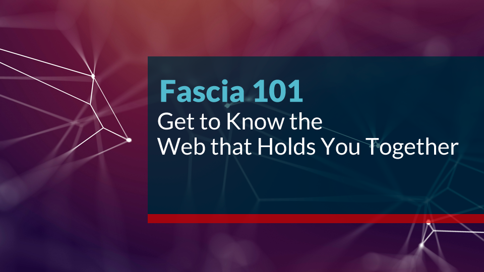 Fascia 101 - An Online Course for Yogis and Movers | Sati Yoga