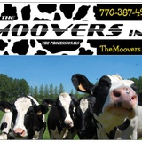 The Moovers Inc. image