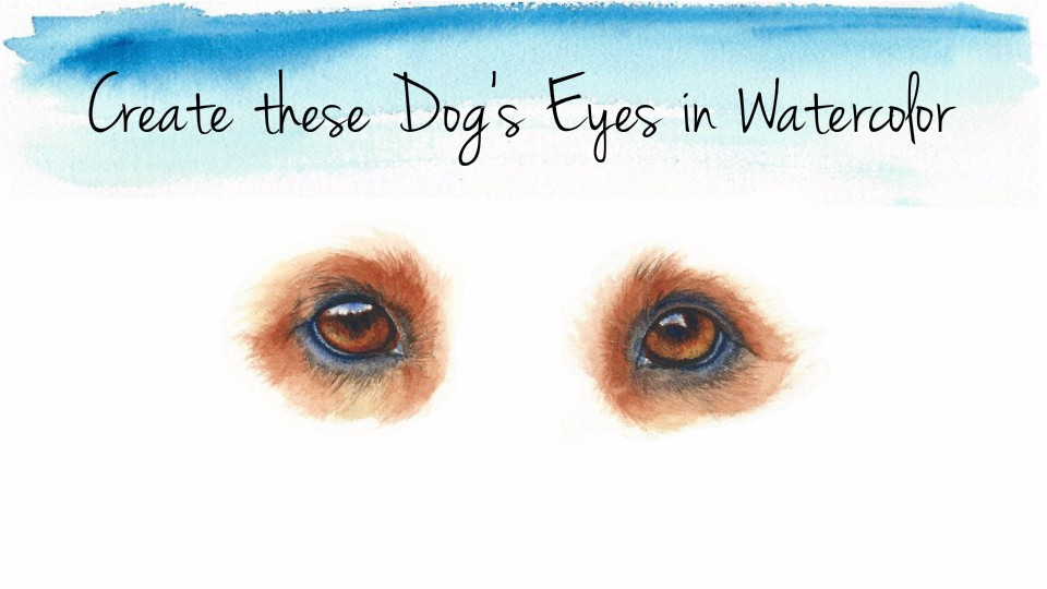 how to paint dogs eyes