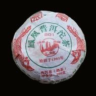 2009 Nan Jian 801 Ripe Pu-erh Tea Tuo Cha from Yunnan Sourcing
