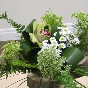 Fleurs Coupées - Bouquet lié marguerites - $50