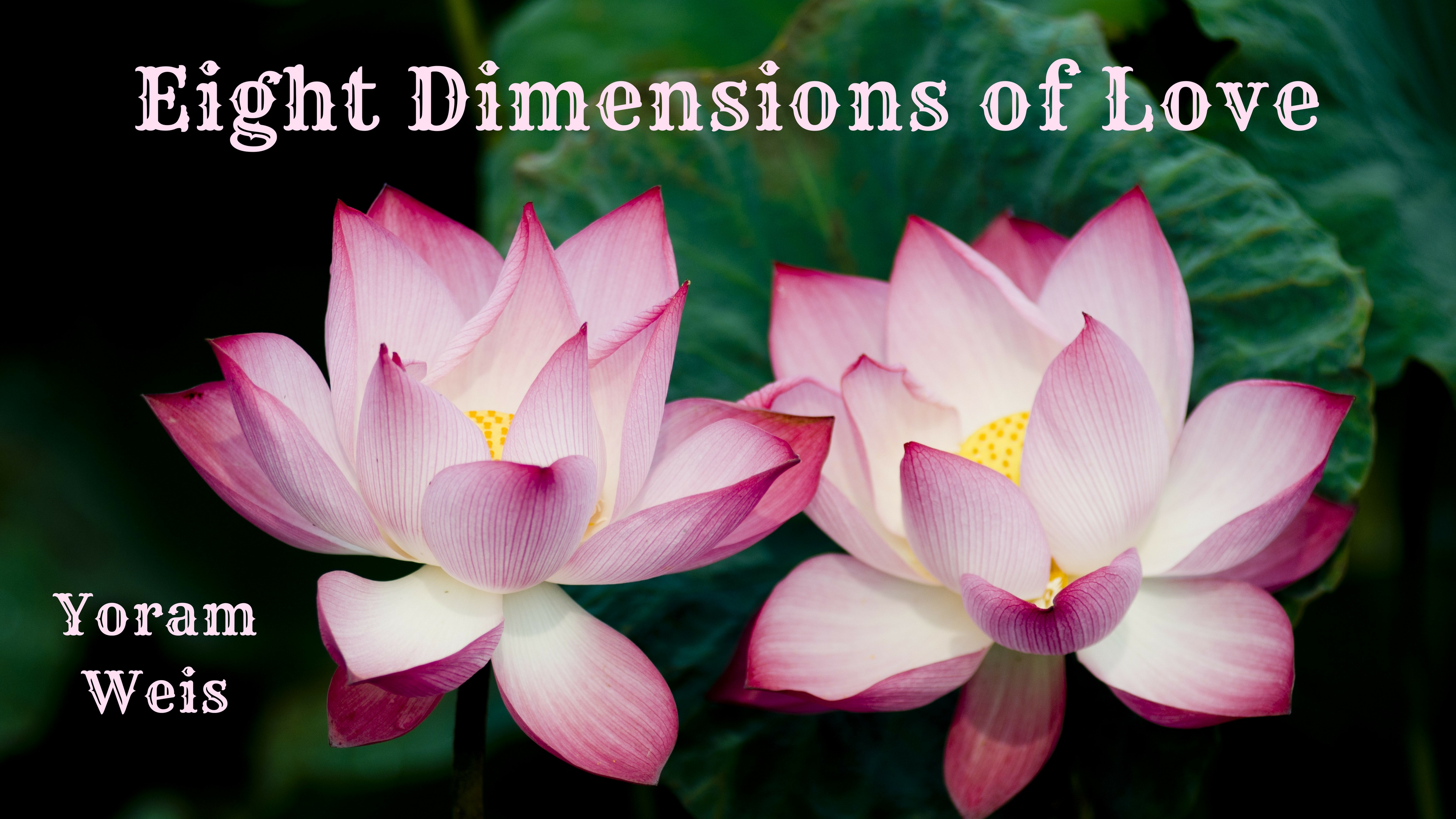 Video – Eight Dimensions of Love