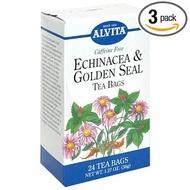 Echinecia from Alvita