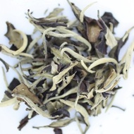 White Moon Pu'erh (Sheng) from Tao Tea Leaf
