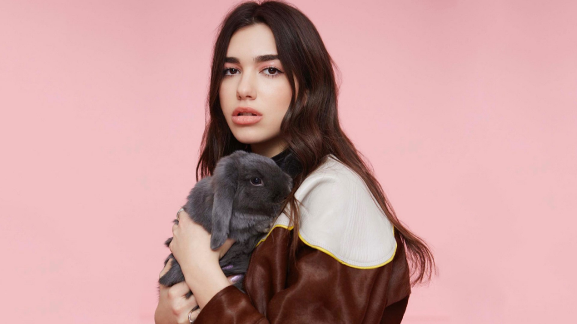 Dua Lipa hits 1bn views on YouTube with 'New Rules'