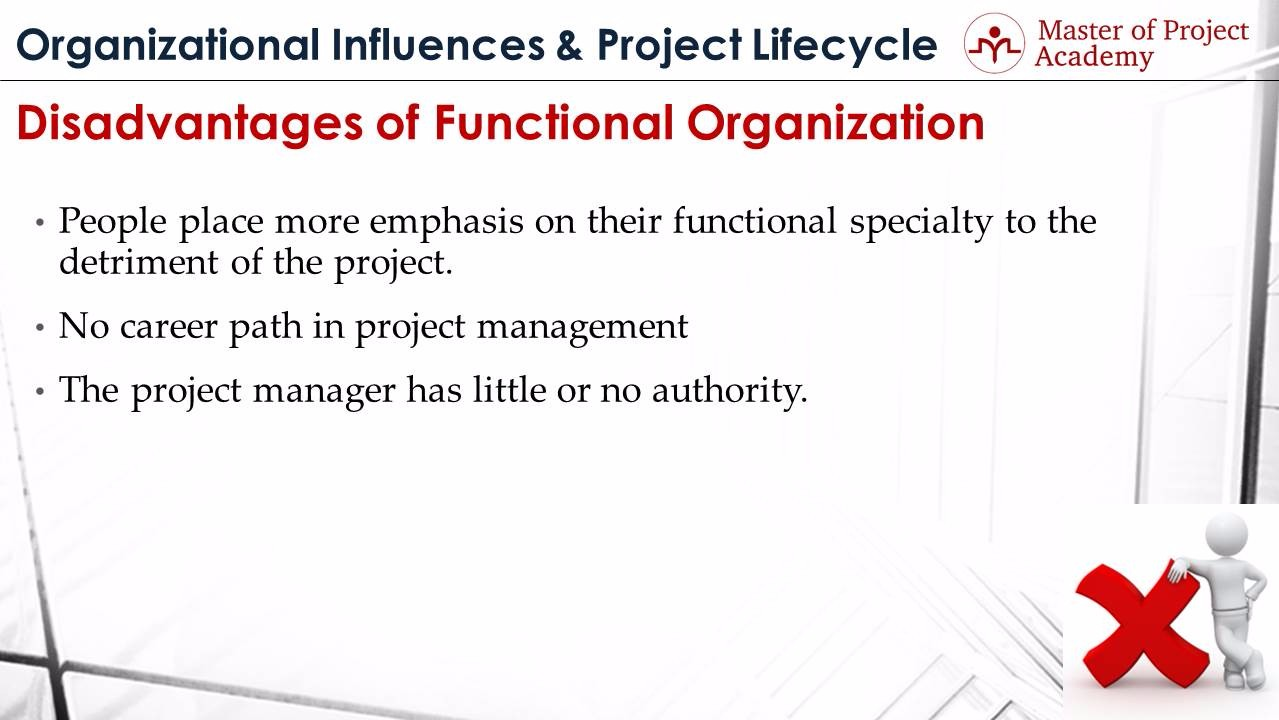 the advantage and disadvantage of a functional structure 5 main disadvantages of functional organisation 1 the relationships are very complex too many cross-relationships between persons and departments make the situation very vague.