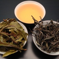 2013 Autumn Song Mao Cha from Mandala Tea