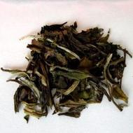 Pai Mu Tan (White Tea) from The Wiltshire Tea Company