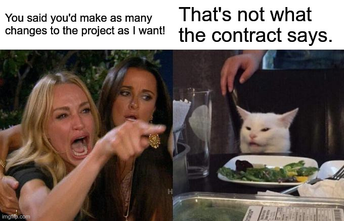 woman yelling at cat about making changes, cat reminds her that they were under contract