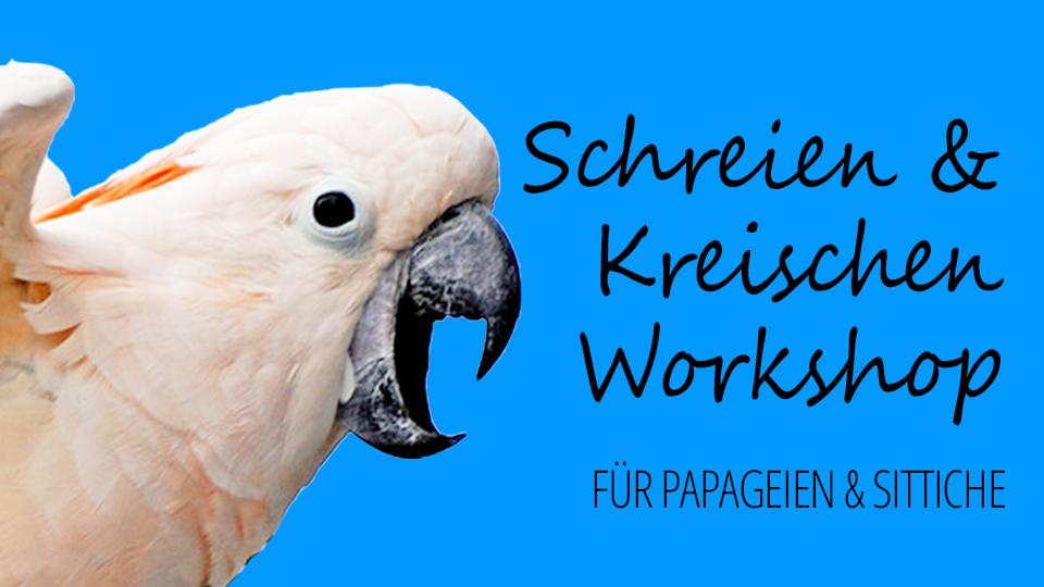 Schreien & Kreischen bei Papageien & Sittichen