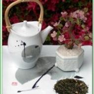 Pommes Hi Antiox Green Tea from Green Tea Lovers
