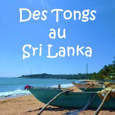 Caroline Tongs Et Sri Lanka Profile Image