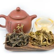 2013 Jingmai Mountain Ancient Tree Sheng - Puerh from Tribute Tea Company