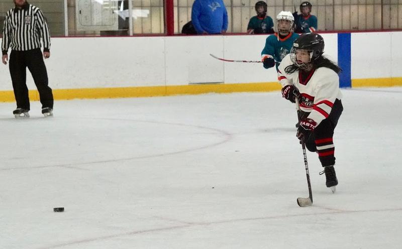 Hockey_g2_254jpeg