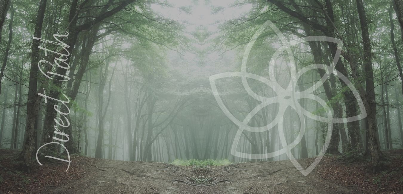 Non-Duality Online classes and courses with non-duality