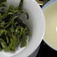 Mao Feng Green Tea from Mandala Tea