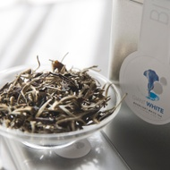 Giant White 2015 Spring Jing Gu Moonlight White Tea from Bitterleaf Teas