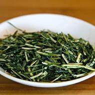 Kukicha Midori from Halcyon Tea