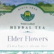 Elder Flowers from Herbaria
