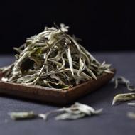 Jing Gu Yang Ta Yunnan Bai Mu Dan White Tea from Yunnan Sourcing