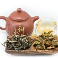 2013 Bangma Ancient Tree Sheng - Puerh from Tribute Tea Company
