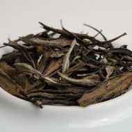Organic Wuyi White Tea (2016) from Old Ways Tea
