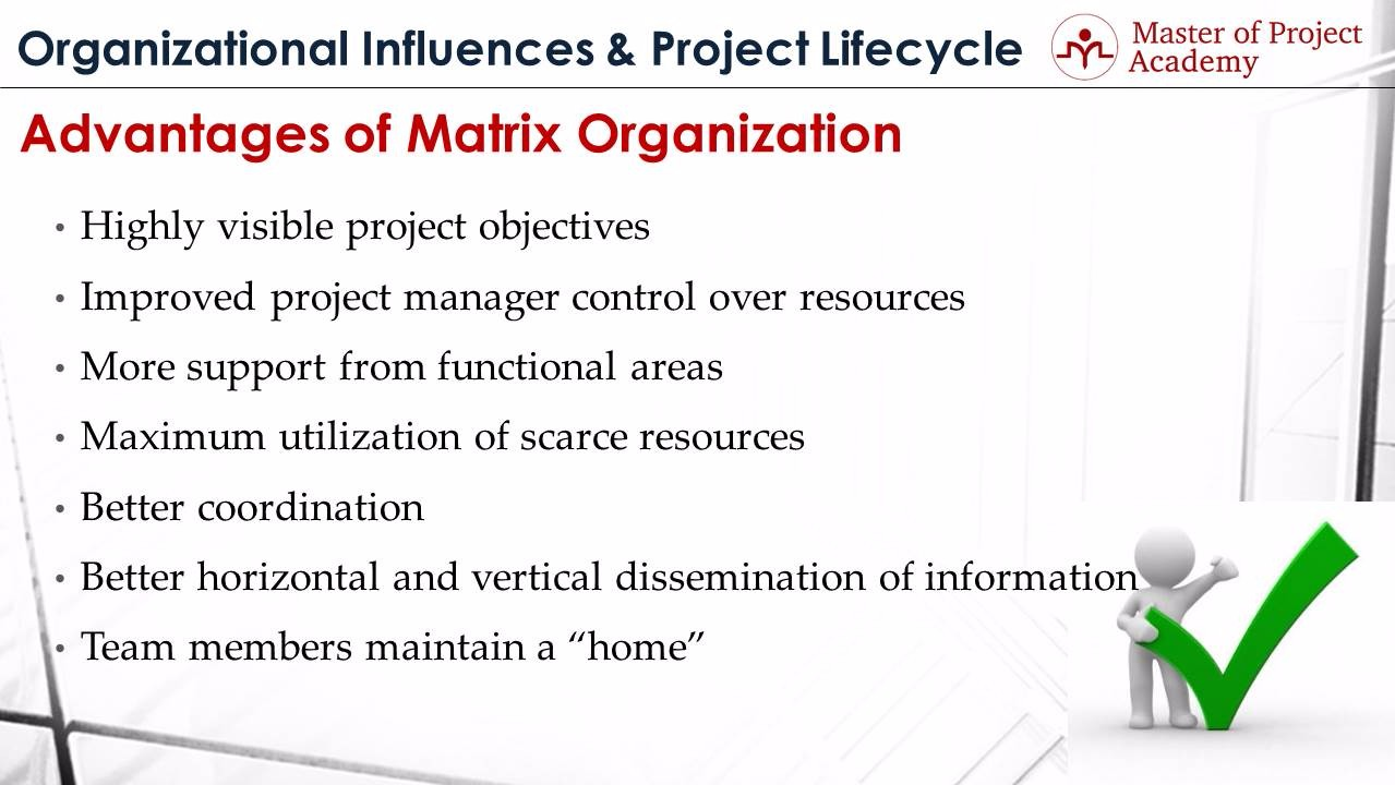 master of project academy organizational structures what are advantages disadvantages organizational structures