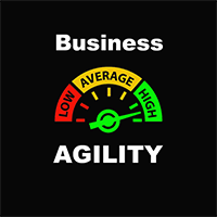 Business Agility Top 100 Consultants Logo
