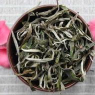 Yunnan Mao Feng Green from Verdant Tea